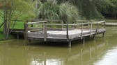 lamacento : Dock, Deck, Pier, Pond, Lake Stock Footage