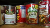 processado : Canned Food, Junk Food, Preservatives