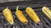 kernels : Grilled Corn, BBQ, Barbeque, Food, Cooking Stock Footage