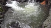 à beira da piscina : River Rapids, Rivers, Streams, Creeks, Rocks