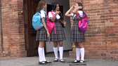 dospívající : Teen Female Students Standing And Talking