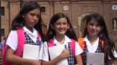 caderno : School Girls With Notebooks Stock Footage