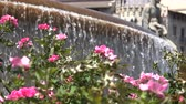 Pink Flowers And Water Fountain Stock Footage