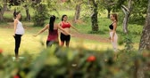 baba : Pregnant women, group of moms training with fitness exercises, mothers doing yoga during pregnancy. Prenatal lesson in park with teacher, counselor, midwife, personal trainer. Slow motion, dolly shot Stock mozgókép