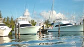 yansıma : Beautiful and dramatic timelapse with wonderful colours of yachts in a marina in isla mujeres, mexico