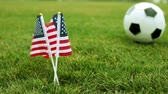 game field : US flags and soccer ball. American flag and soccer ball on the grass.