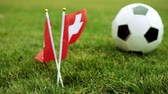 football field : Flag of Switzerland and football ball on the grass. Swiss flag and soccer ball.