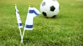 game field : Flag of Israel and football ball. Israeli flag and ball on the grass.