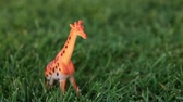 жираф : Figurine of a giraffe on a lawn. Toy giraffe in the grass.