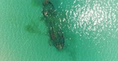roncs : Aerial photography, a beautiful sunken ship in the sea.