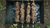 karakalem : Shish kebab is fried on a brazier. Stok Video