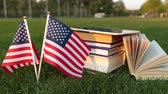 biblioteka : Books and the US flag on the grass. Study in America.