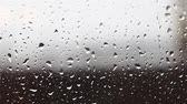 수분 : Rain drops on the glass. Autumn and rain.