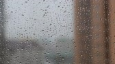 수분 : Rain drops on the glass. Gray autumn background.