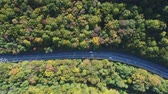 asfalt : Highway and beautiful autumn forest, aerial view.