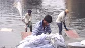honesto : Agra, India, - March 2020. Traditional laundry on the river in India. Stock Footage