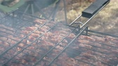 basting : Meat on the barbecue grill