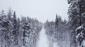 Aerial flight over the winter forest. Drone flies over the taiga. Backpacking winter hike