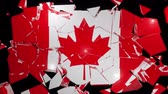 recession : Canadian Canada collapse flag country dollar 4k Stock Footage