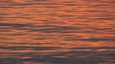 Ripples on the orange shining water at sunset Stock Footage