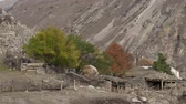 trawa : Rural landscape in autumn in the dolomite mountains Wideo