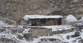 obora : Ancient barn for cows in the mountains under the snow