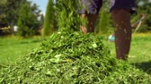 mowed : Man emptying a grass box of a lawnmower Stock Footage