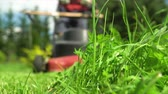 mowing : Male gardener approaching with lawnmower Stock Footage