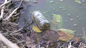 consumo : Ecological Water pollution - Used plastic bottle and other floating and polluting on water surface Vídeos