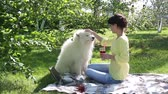 yellow dog : A girl is feeding her dog in a park on a picnic.