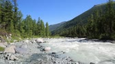fast ice : A fast mountain river. Noisy dangerous mountain river in the Republic of Altai, Russia.