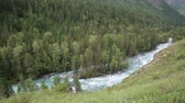altura : View from the height of the mountain river. Fast mountain river in Siberia. Russia. Stock Footage