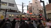 coming in : Tokyo - Jiyugaoka 26 Jan 2019 :: People Waiting At Crossing To Let Train Pass in Tokyo, Japan Stock Footage