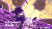 magnification : Lymphocyte Generates Antibodies Stock Footage