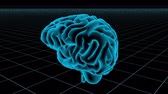 mikroskop : 3D human brain on white background Stok Video
