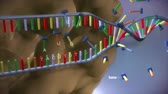 cromo : High quality animation of DNA strand.RNA and cell nucleus