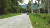 Man Ride Scooter Along the Road with Palm Grove