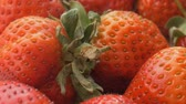 döndürme : Natural looking fresh red strawberry. Macro with shallow depth of field. Stok Video
