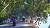 township : NYAUNGSHWE, MYANMAR - FEBRUARY 20, 2018: The shady road at Tharzi pond with lush thickets of trees, cars stop to make donations to workers of local Buddhist temple, on February 20 in Nyaungshwe Stock Footage
