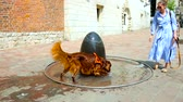setter : KRAKOW, POLAND - JUNE 11, 2018: Summer midday is right time to relax in fountain, longhair Irish red setter tries to get cool and drink some fresh water, playing with its owner, on June 11 in Krakow.