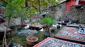 эстакада : TEHRAN, IRAN - OCTOBER 25, 2017: The restaurant of Darband with trestle-beds on water of the mountain river, visitors enjoy the tasty local cuisine, shisha, cool air and shade, on October 25 in Tehran Стоковые видеозаписи