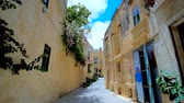 máltai : RABAT, MALTA - JUNE 16, 2018: The narrow twisted backstreet is lined with old residential buildings, tiny shops and cafes, the blooming plants rise above the wall-fences, on June 16 in Rabat.