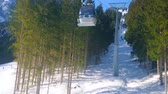 pista da sci : GOSAU, AUSTRIA - FEBRUARY 26, 2019: Nice journey in gondola of Panorama Jet Zwieselalm cable car with a view on the mountain slope, coniferous forest and perfect ski pistes, on February 26 in Gosau
