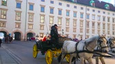 viyana : VIENNA, AUSTRIA - FEBRUARY 17, 2019: Enjoy the pleasant ride in horse-drawn carriage along In Der Burg courtyard of Hofburg Palace, on February 17 in Vienna.