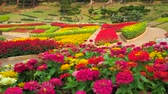 継続性 : Panorama of Mae Fah Luang garden with scenic colorful flower beds, created of Western flower species, trimmed bushes and tropical trees, Doi Tung, Chiang Rai, Thailand
