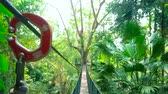 úzký : Enjoy extreme tour, walking the long hanging rope bridge in tropical forest of Tree Top Walk, Mae Fah Luang garden, Doi Tung, Chiang Rai, Thailand Dostupné videozáznamy