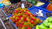 рынок : MAEKLONG, THAILAND - MAY 13, 2019: The small kitten plays on the tray with rambutans and mangosteens of a fruit stall in Maeklong Railway Market, on May 13 in Maeklong Стоковые видеозаписи