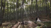fede nuziale : Groom with bride walking in the forest park. Sunbeams. Wedding couple. Happy family. Man and woman in love. Lovely groom and bride. Slow motion