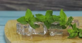 solide : Ice cubes and fresh mint leaves isolated on wooden cutting board