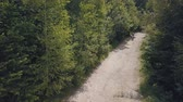 motocyklista : Extreme motorcyclist rides on road in the forest. Motocross. Motosport. Freedom. Stock footage of motorcycle. Aerial view